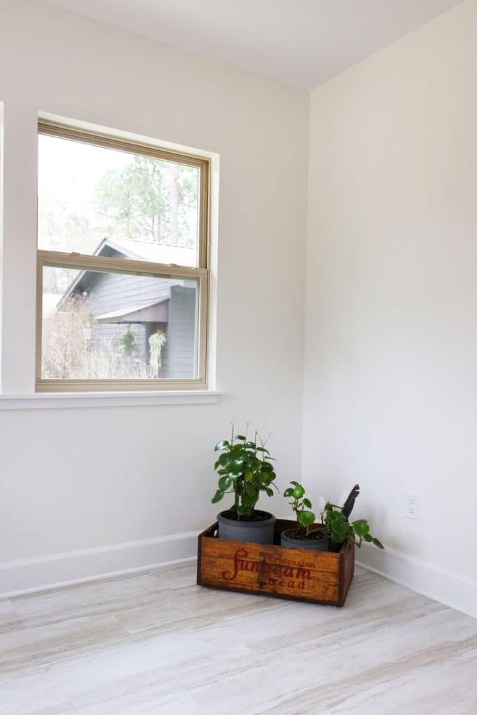Window and decor